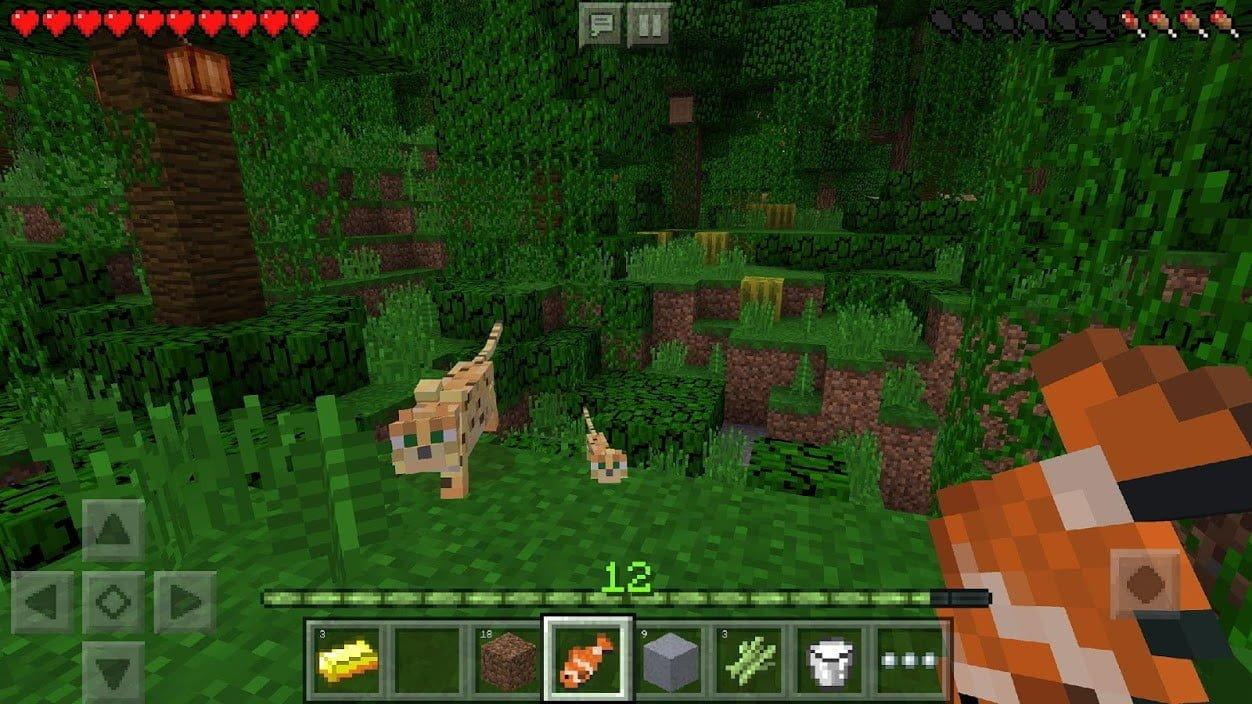 بازی Minecraft — Pocket Edition